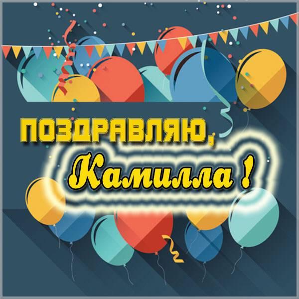 Картинка для девочки Камиллы - скачать бесплатно на otkrytkivsem.ru