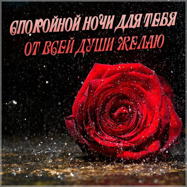 Картинка для вайбера спокойной ночи - скачать бесплатно на otkrytkivsem.ru