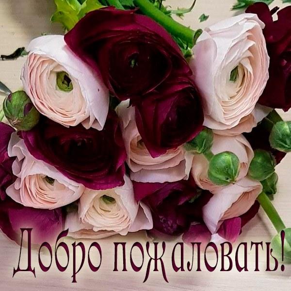 Картинка добро пожаловать цветы - скачать бесплатно на otkrytkivsem.ru