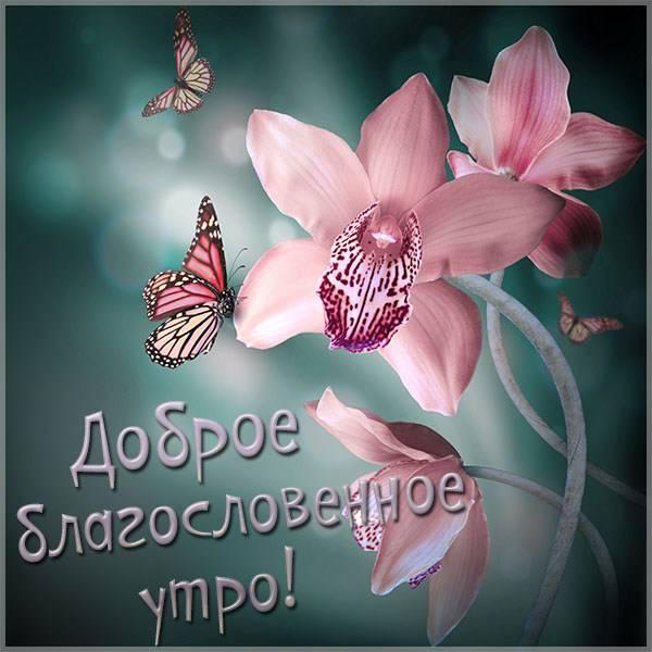 Картинка доброе благословенное утро красивая - скачать бесплатно на otkrytkivsem.ru