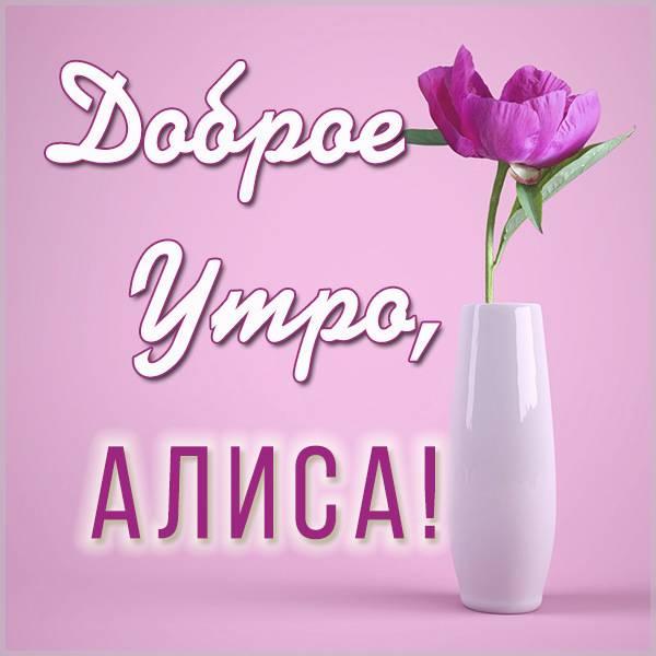 Картинка доброе утро Алиса - скачать бесплатно на otkrytkivsem.ru