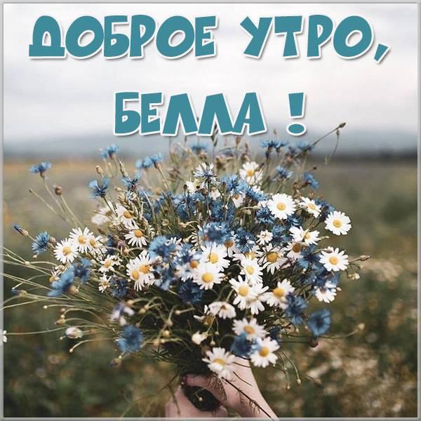 Картинка доброе утро Белла - скачать бесплатно на otkrytkivsem.ru