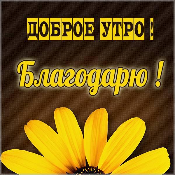 Картинка доброе утро благодарю - скачать бесплатно на otkrytkivsem.ru