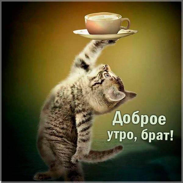 Картинка доброе утро брат прикольная - скачать бесплатно на otkrytkivsem.ru