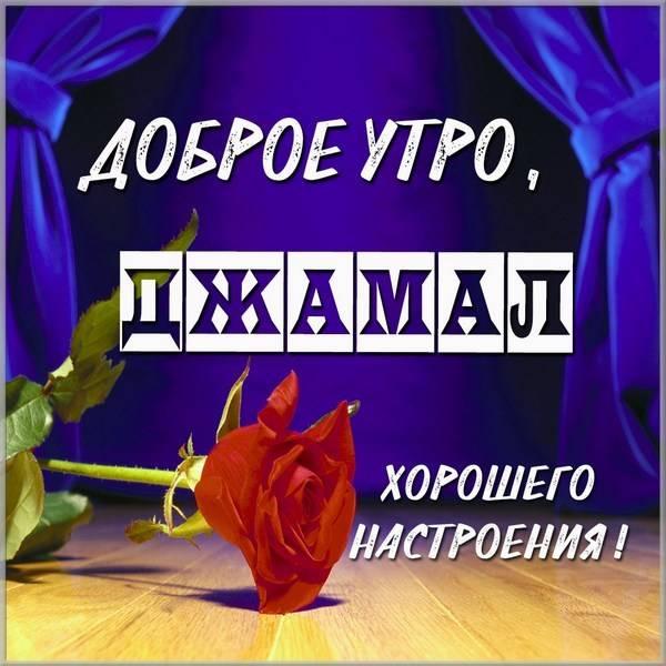 Картинка доброе утро Джамал - скачать бесплатно на otkrytkivsem.ru