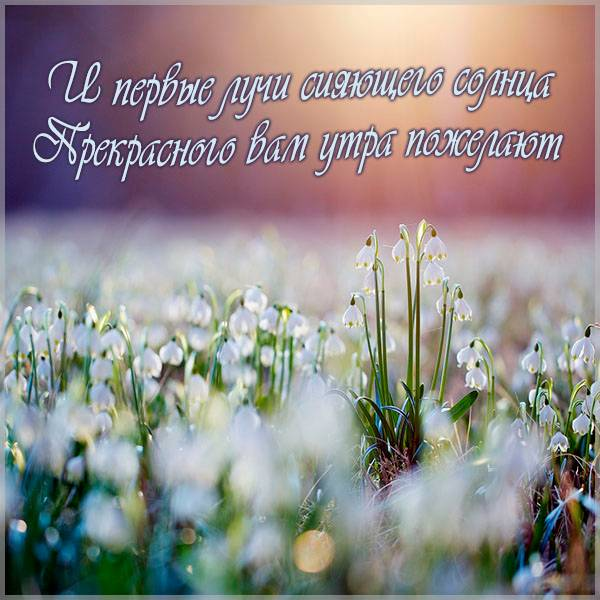 Картинка доброе утро и прекрасного настроения мужчине - скачать бесплатно на otkrytkivsem.ru