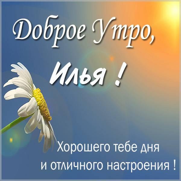 Картинка доброе утро Илья - скачать бесплатно на otkrytkivsem.ru