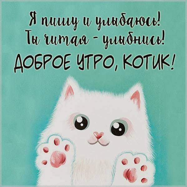 Картинка доброе утро котик любимому - скачать бесплатно на otkrytkivsem.ru