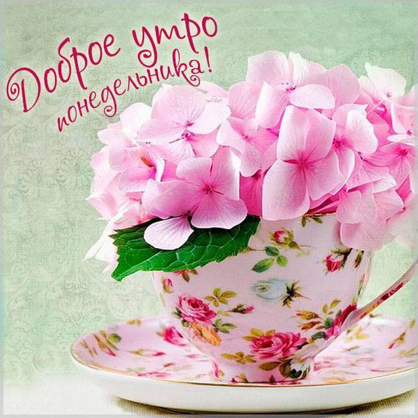 Картинка доброе утро красивая хорошего понедельника - скачать бесплатно на otkrytkivsem.ru