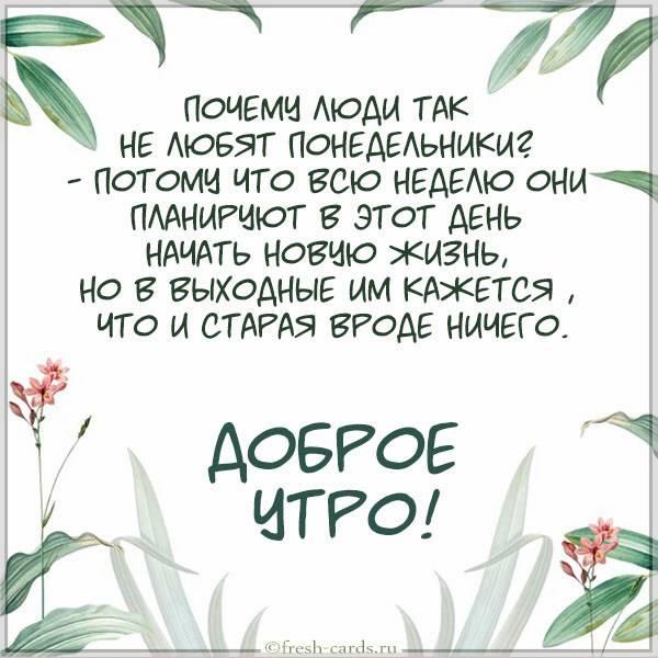 Картинка доброе утро красивая понедельник прикольная - скачать бесплатно на otkrytkivsem.ru