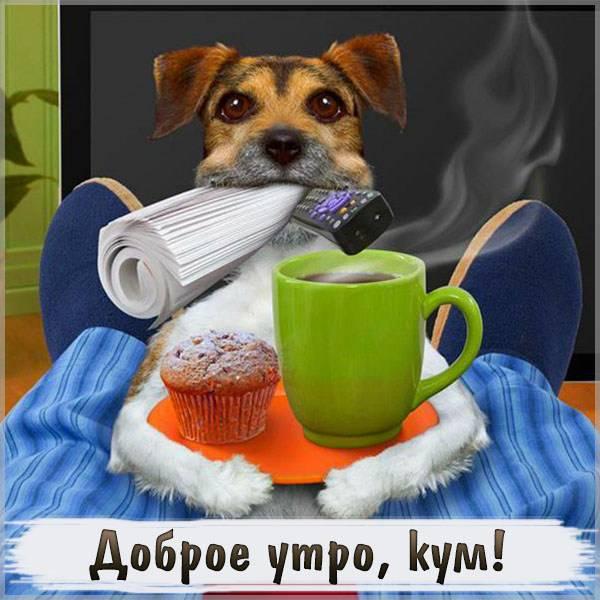 Картинка доброе утро кум прикольная - скачать бесплатно на otkrytkivsem.ru