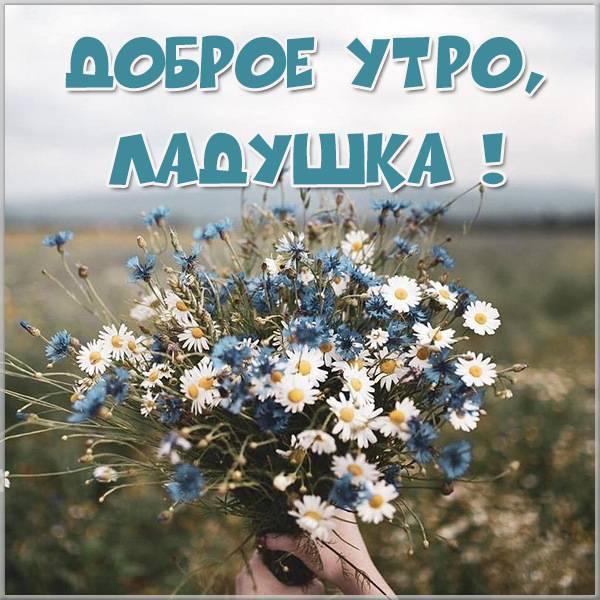 Картинка доброе утро Ладушка - скачать бесплатно на otkrytkivsem.ru