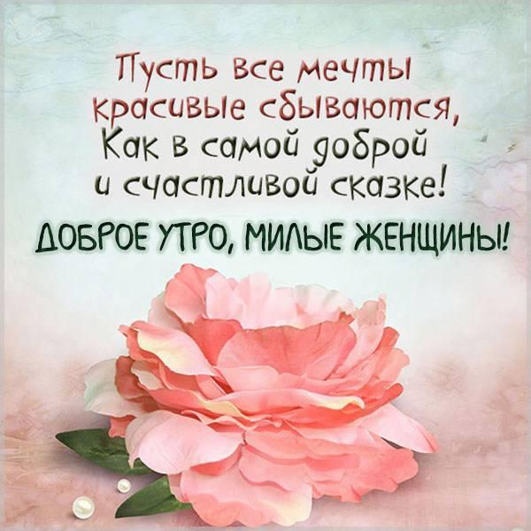 Картинка доброе утро милые женщины - скачать бесплатно на otkrytkivsem.ru