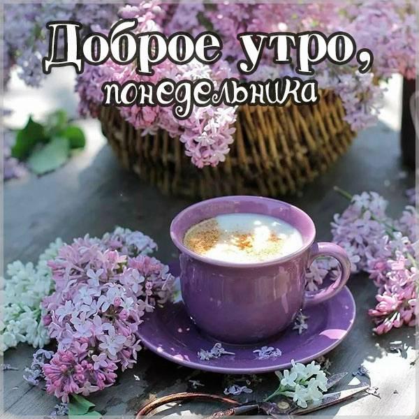 Картинка доброе утро понедельника - скачать бесплатно на otkrytkivsem.ru