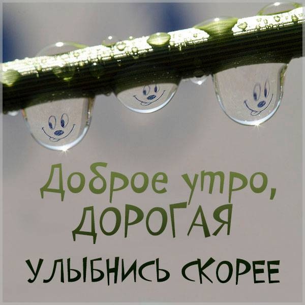 Картинка доброе утро прикольная для девушки - скачать бесплатно на otkrytkivsem.ru