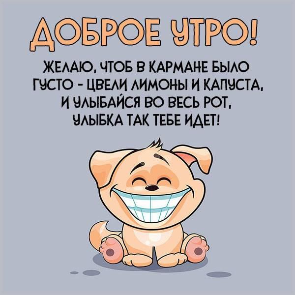 Картинка доброе утро прикольная парню - скачать бесплатно на otkrytkivsem.ru