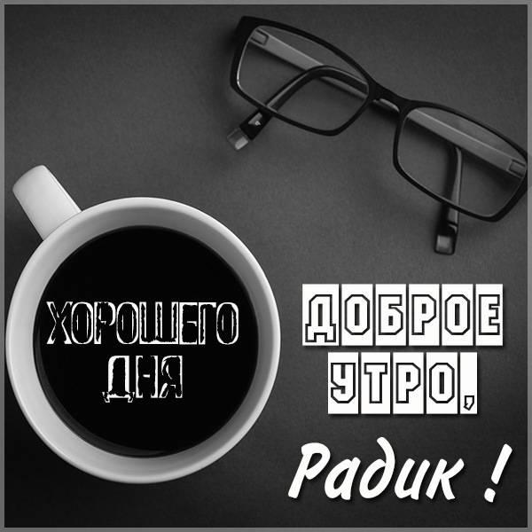 Картинка доброе утро Радик - скачать бесплатно на otkrytkivsem.ru