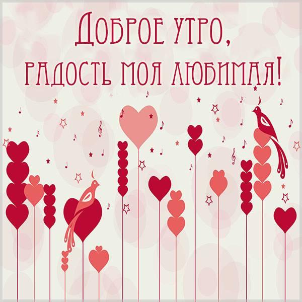 Картинка доброе утро радость моя любимая - скачать бесплатно на otkrytkivsem.ru