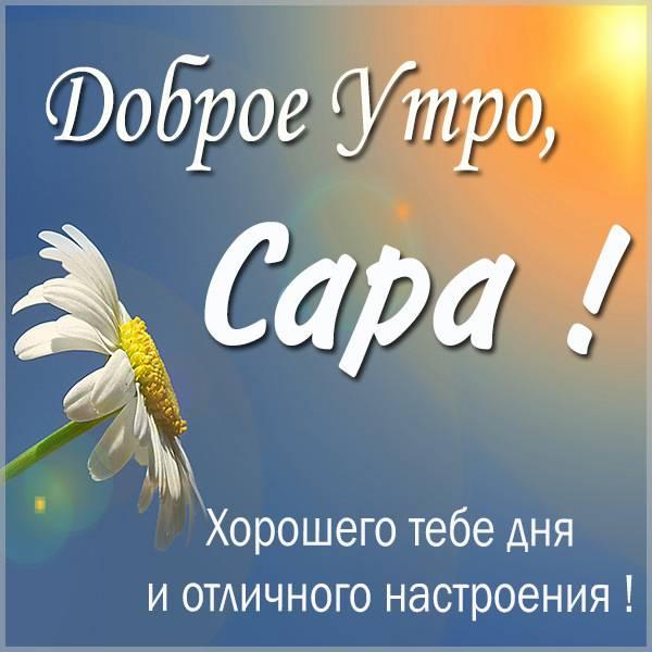 Картинка доброе утро Сара - скачать бесплатно на otkrytkivsem.ru