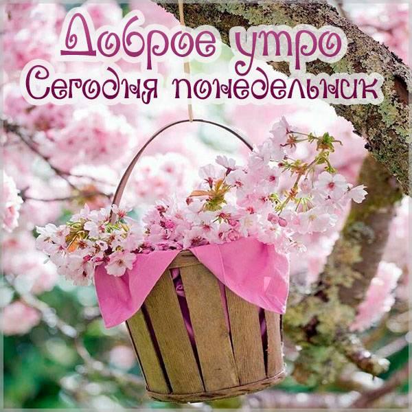 Картинка доброе утро сегодня понедельник - скачать бесплатно на otkrytkivsem.ru
