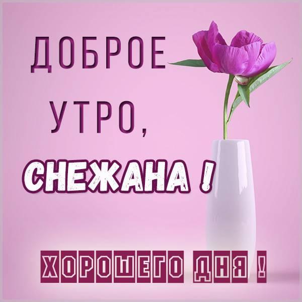 Картинка доброе утро Снежана - скачать бесплатно на otkrytkivsem.ru