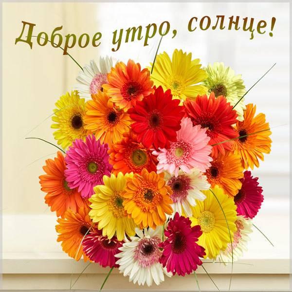 Картинка доброе утро солнце цветы - скачать бесплатно на otkrytkivsem.ru