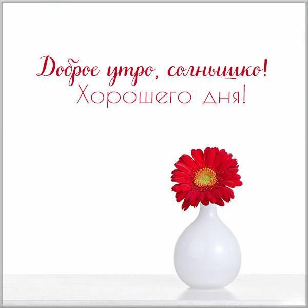 Картинка доброе утро солнышко хорошего дня - скачать бесплатно на otkrytkivsem.ru