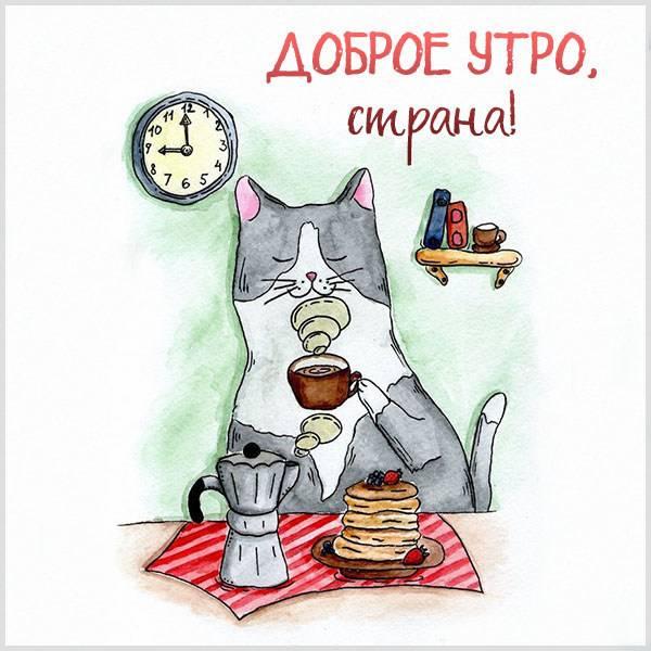 Картинка доброе утро страна прикольная - скачать бесплатно на otkrytkivsem.ru