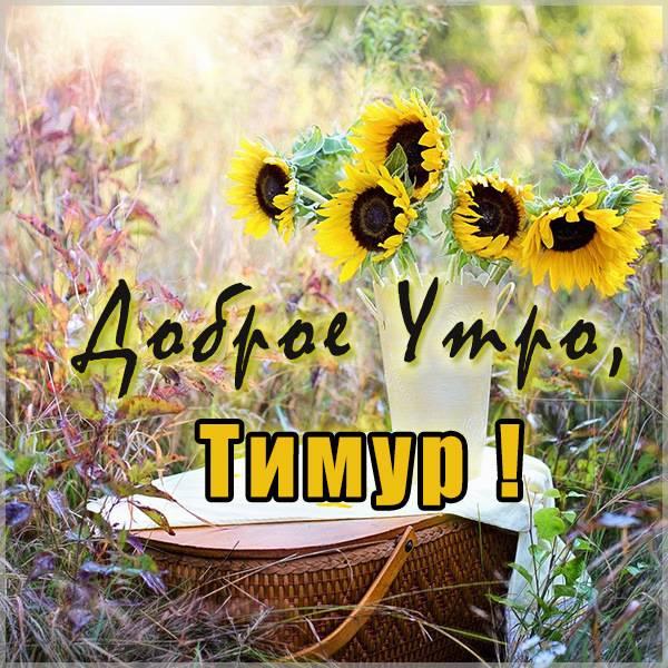 Картинка доброе утро Тимур - скачать бесплатно на otkrytkivsem.ru