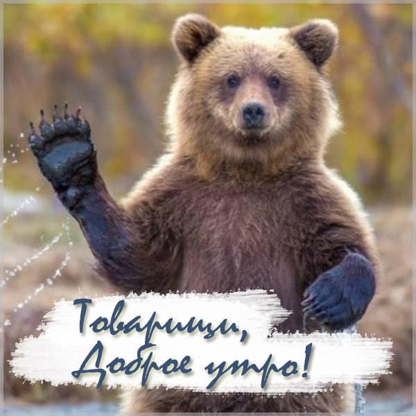 Картинка доброе утро товарищи прикольная - скачать бесплатно на otkrytkivsem.ru