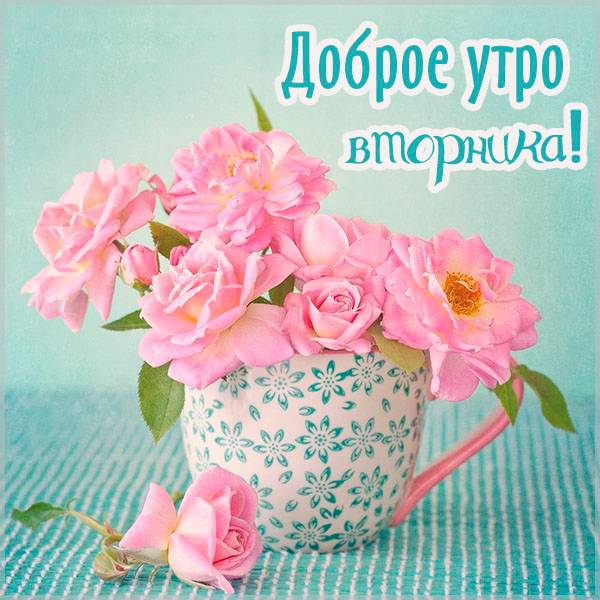 Картинка доброе утро вторника красивая новая женская - скачать бесплатно на otkrytkivsem.ru