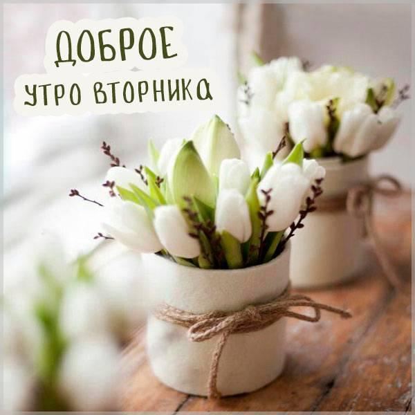 Картинка доброе утро вторника новая - скачать бесплатно на otkrytkivsem.ru