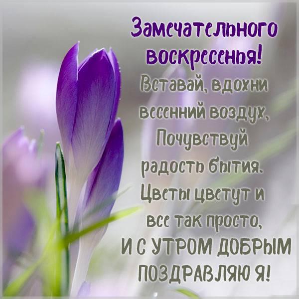 Картинка доброе весеннее утро воскресенья - скачать бесплатно на otkrytkivsem.ru