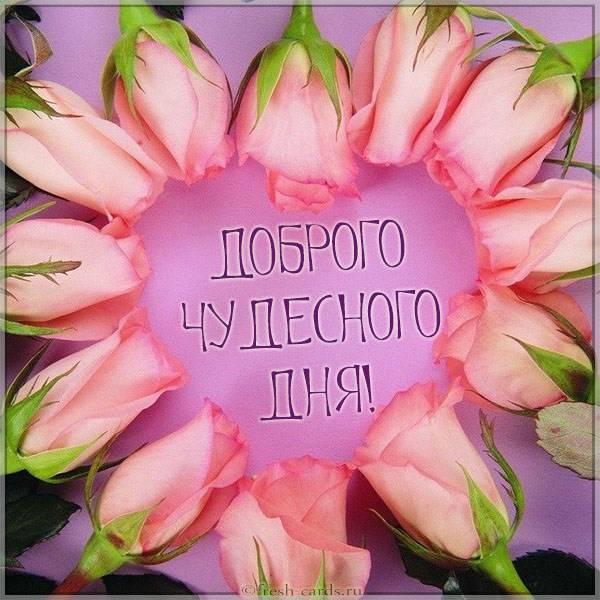 Картинка доброго чудесного дня - скачать бесплатно на otkrytkivsem.ru
