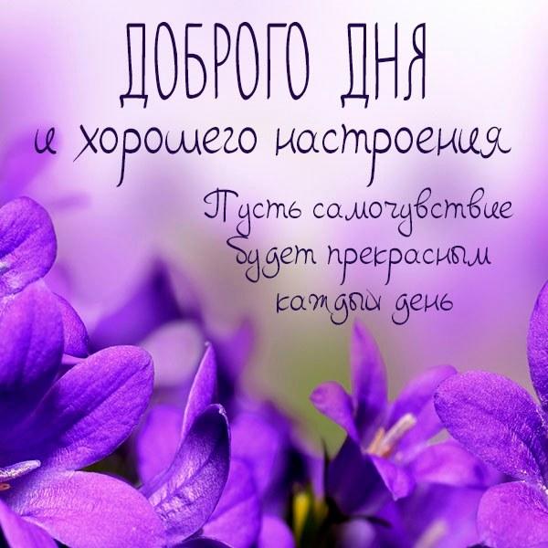 Картинка доброго дня хорошего настроения здоровья - скачать бесплатно на otkrytkivsem.ru