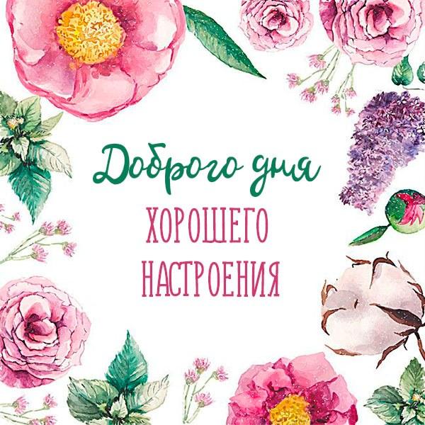 Картинка доброго дня хорошего настроения - скачать бесплатно на otkrytkivsem.ru