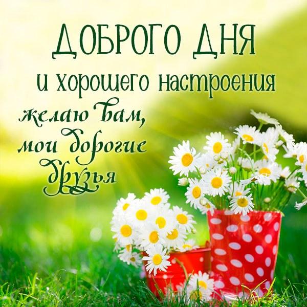 Картинка доброго дня и хорошего настроения друзьям - скачать бесплатно на otkrytkivsem.ru