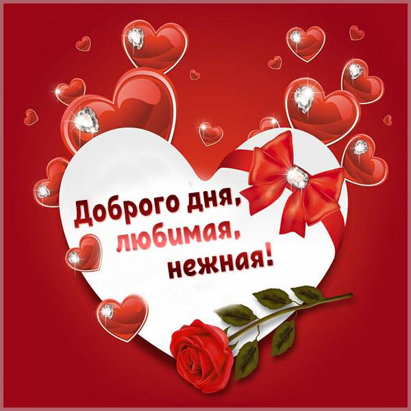 Картинка доброго дня любимая нежная - скачать бесплатно на otkrytkivsem.ru