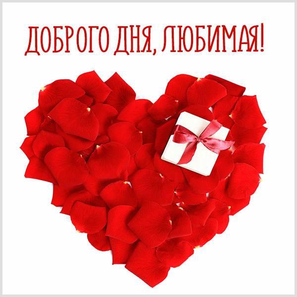 Картинка доброго дня любимая - скачать бесплатно на otkrytkivsem.ru