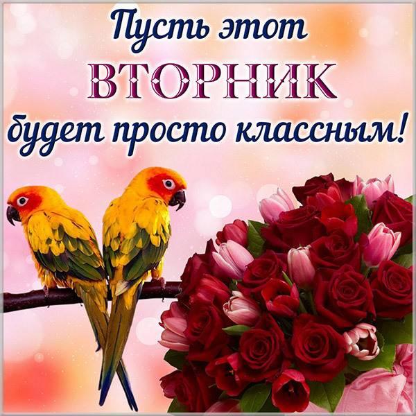 Картинка доброго дня вторника - скачать бесплатно на otkrytkivsem.ru