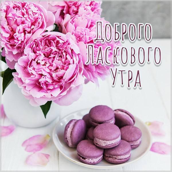 Картинка доброго ласкового утра - скачать бесплатно на otkrytkivsem.ru