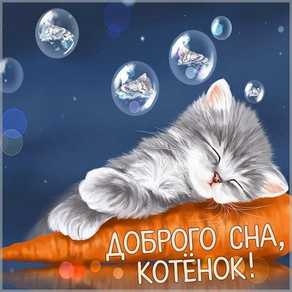 Картинка доброго сна котенок - скачать бесплатно на otkrytkivsem.ru