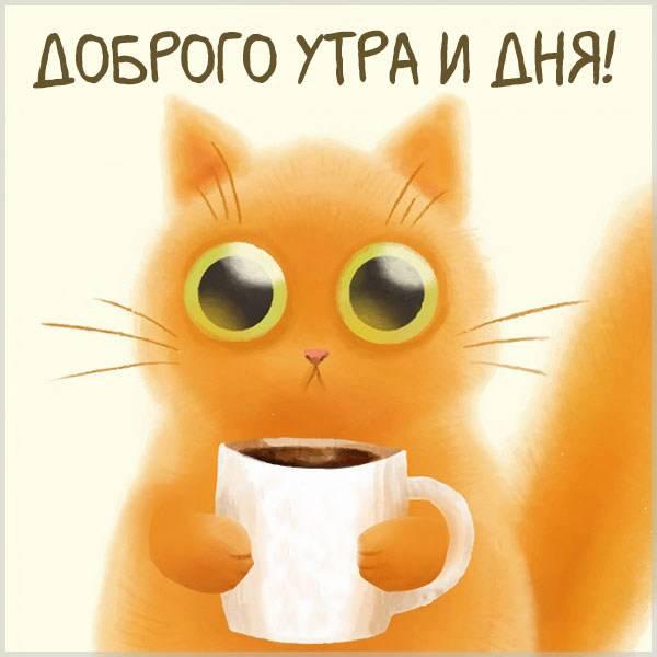 Картинка доброго утра и дня - скачать бесплатно на otkrytkivsem.ru