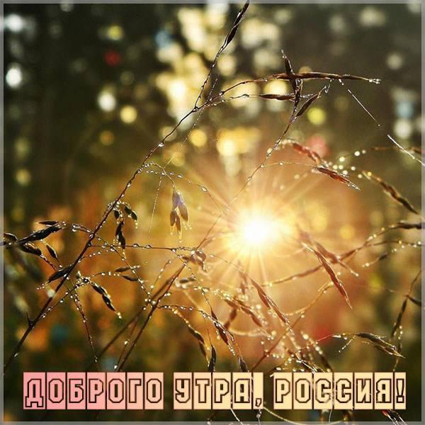 Картинка доброго утра россия - скачать бесплатно на otkrytkivsem.ru