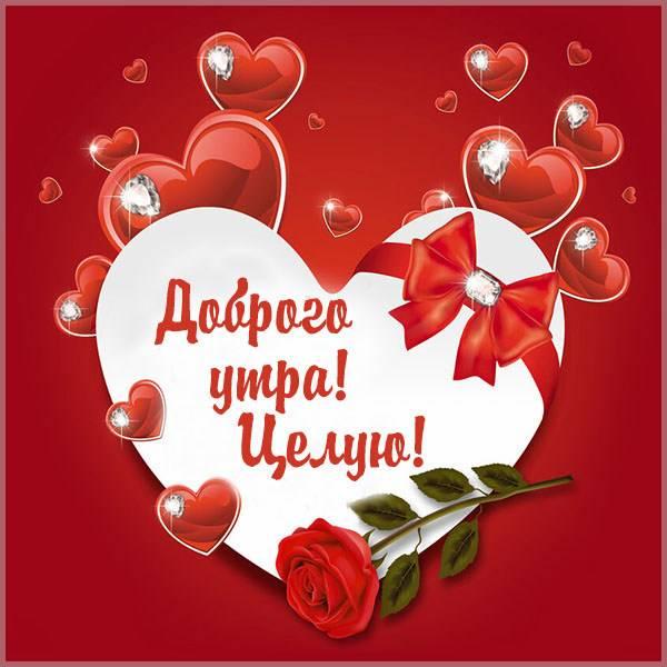 Картинка доброго утра целую - скачать бесплатно на otkrytkivsem.ru
