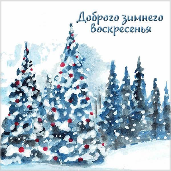 Картинка доброго воскресенья зимнего - скачать бесплатно на otkrytkivsem.ru
