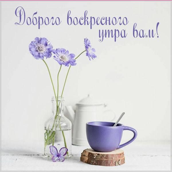 Картинка доброго воскресного утра вам - скачать бесплатно на otkrytkivsem.ru