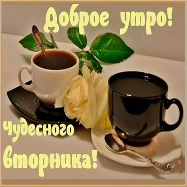 Картинка доброго вторника и позитива - скачать бесплатно на otkrytkivsem.ru