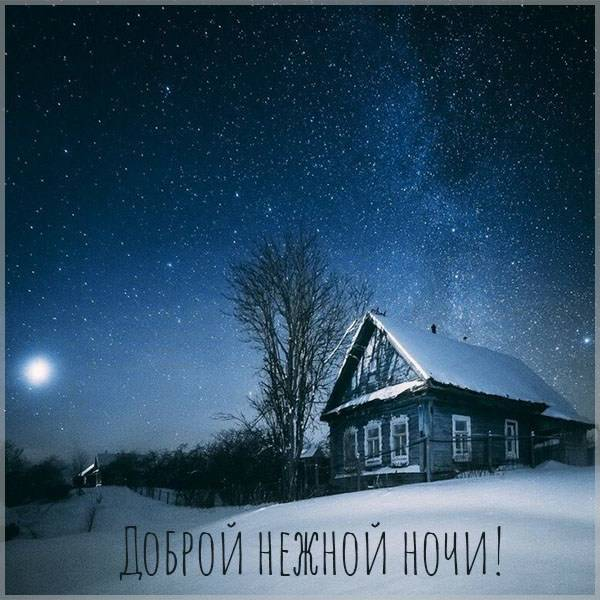 Картинка доброй нежной ночи мужчине - скачать бесплатно на otkrytkivsem.ru