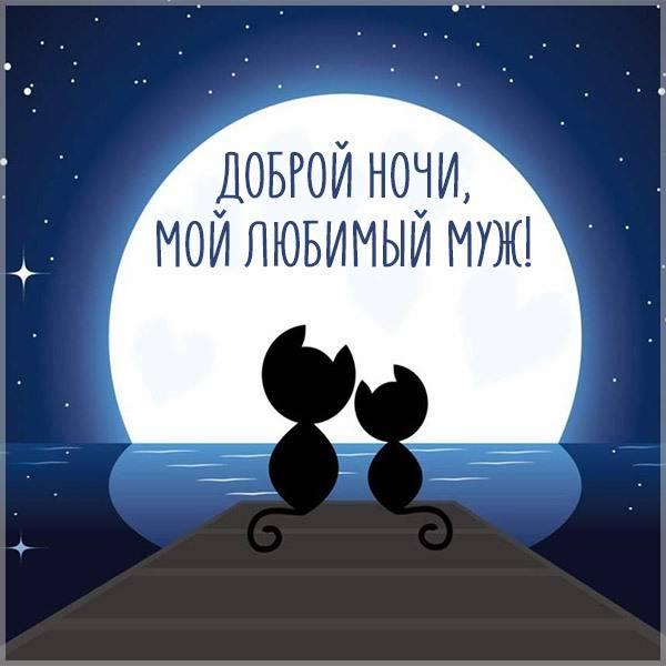 Картинка доброй ночи любимому мужу - скачать бесплатно на otkrytkivsem.ru